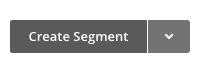 Create segment button