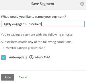 name and save your segment