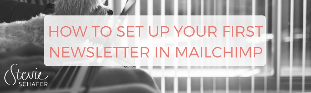 How to set up your first newsletter in MailChimp